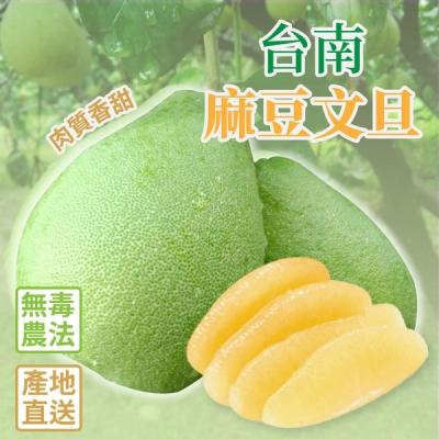 台南麻豆老欉文旦禮盒 10斤/盒 (9-14顆) 無毒農法栽種